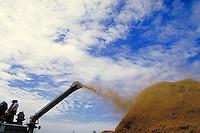 1880's threshing machine spewing the chaff onto a pile on a beautiful South Dakota summer day. Eureka South Dakota.