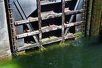 Tainter Gates control the water flow at the Hiram S. Chittendon Locks, Seattle, Washington.