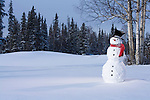 Holiday pictures of snowmen and Christmas tree photos