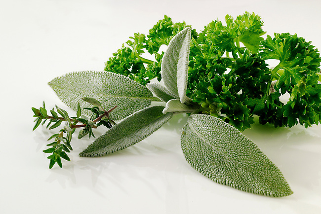 Fresh sage and parsley foor photos