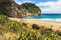 Whites Beach north of Piha township, West Auckland, North Island, New Zealand