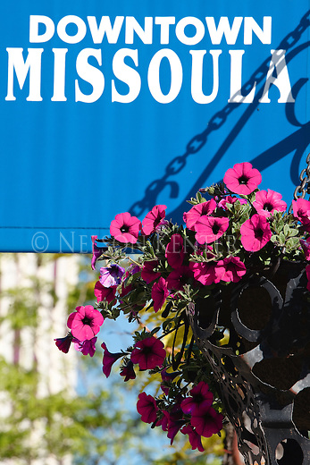 Hanging flower baskets and downtown Missoula sign