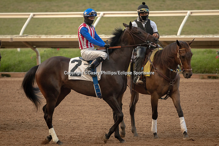 DEL MAR, CA  SEP 6:  #2 Madone, ridden by Flavien Prat, in the post parade before the Del Mar Juvenile Fillies Turf at Del Mar Thoroughbred Club on September 6, 2020 in Del Mar, CA.(Photo by Casey Phillips/Eclipse Sportswire/CSM.