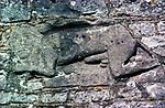 Celtic Pagan Fertility Figure? Or Saxon carving, seen on the east exterior wall of the church. Until relatively recent times, this erect male was plastered over as was much of the church was and saved from Victorian puritanical vandals, thus it's good preservation. The church of St James the Great, Abson, Gloucestershire UK.