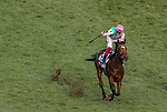 November 3, 2018: Enable #2, ridden by Frankie Dettori, wins the Longines Breeders' Cup Turf on Breeders' Cup World Championship Saturday at Churchill Downs on November 3, 2018 in Louisville, Kentucky. Carolyn Simancik/Eclipse Sportswire/CSM