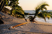 Iles Bahamas /Ile d'Andros/South Andros : les hamacs entre les palmiers de la plage Eco-Lodge-Tiamo-Resort // Bahamas Islands / Andros Island / South Andros: the hammocks between the palm trees of the Eco-Lodge-Tiamo-Resort beach