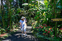 Tourists walk through the Anthurium Corner at Hawaii Tropical Botanical Garden, Papa'ikou, Big Island of Hawaiʻi.