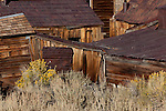 Bodie State Historical Park, CA