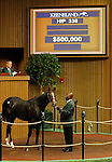 September 15, 2015: Hip 338 Medaglia d'oro - In Secure colt consigned by Trackside Farm.   Candice Chavez/ESW/CSM