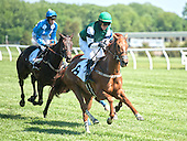 6th Filly/Mare Maiden Hurdle - See Trouble