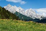 Austria, Tyrol, Pillersee Valley, view at Loferer Steinberge mountains | Oesterreich, Tirol, Pillerseetal, Blick in die Loferer Steinberge