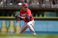 Minnesota Twins infielder Doug Bernier (17) during a Spring Training game against the Pittsburgh Pirates on March 13, 2015 at McKechnie Field in Bradenton, Florida.  Minnesota defeated Pittsburgh 8-3.  (Mike Janes/Four Seam Images)