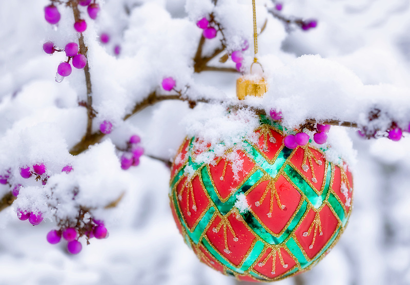 Christmas tree ornament in snow covered Beauty Bush with purple berries.