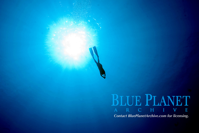 A free diver decends into the blue water passing the rays of the sun in Sharm el Sheikh, Egypt, Nov 2006., Northern Africa