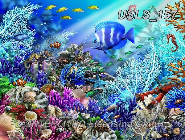 Lori, REALISTIC ANIMALS, REALISTISCHE TIERE, ANIMALES REALISTICOS, zeich, paintings+++++Coral Reef Bed_2_24.5X18.5_72_CEACO,USLS157,#a#, EVERYDAY ,puzzle,puzzles
