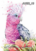 Carlie, REALISTIC ANIMALS, REALISTISCHE TIERE, ANIMALES REALISTICOS, paintings+++++,AUED13,#A#, EVERYDAY ,australian wildlife