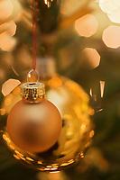 Europe/Voïvodie de Petite-Pologne/Cracovie:Décoration de Noël au restaurant du Manoir Kosciuszko