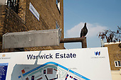 Pigeon on a sign at Warwick Estate, West London.