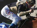 Magical Fantasy ridden by Alex Solis, wins the John C. Mabee Stakes at Del Mar Throughbred Club, Del Mar CA.
