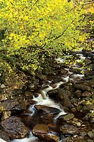 Benglas Burn on the West Highland Way, Benglas Campsite, Inverarnan, Loch Lomond and the Trossachs National Park