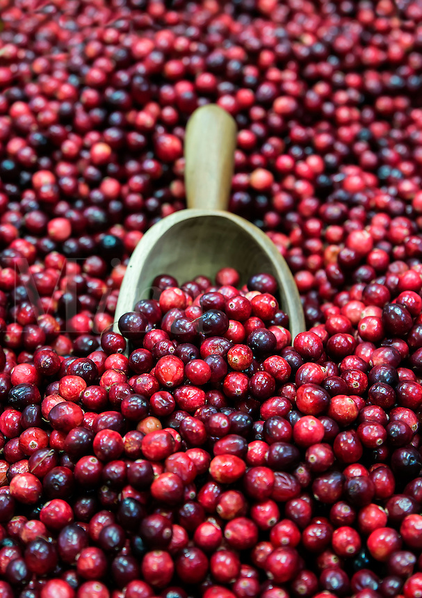 Fresh cranberries in a market.