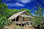 Casa na Floresta Amazônica. Manicoré. Amazonas. 2003. Foto de Zaida Siqueira.