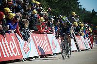 Alejandro Valverde (ESP/Movistar) pulls in teammate & team leader Nairo Quintana (COL/Movistar) towards the finish<br /> <br /> stage 12: Montpellier - Mont Ventoux (shortened stage due to wind until Chalet Reynard; 178km)<br /> 103rd Tour de France 2016