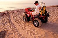 Marine scientists study the Loggerhead turtle, Caretta caretta, Juno Beach, Florida, Atlantic Ocean