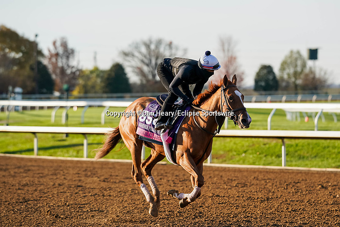 November 5, 2020: Editor At Large, trained by trainer Chad C. Brown, exercises in preparation for the Breeders' Cup Juvenile Fillies Turf at Keeneland Racetrack in Lexington, Kentucky on November 5, 2020. Dan Heary/Eclipse Sportswire/Breeders Cup/CSM