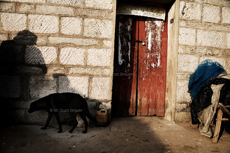 A dog walks past a section of the home of Wang Shou Ha and husband Fan Xi Bao in Fanzhuang Village, Gangyun County, Jiangsu, China, where they care for their orphaned granddaughter Fan Li Na, 10.  The girl's father died in a car crash in 2000 and the girl's mother remarried, abandoning the girl.  Both grandparents are over 60 and have health problems which make it impossible to support the girl if she continues school.  ..At the time of the picture, China's Amity Foundation charity, was investigating the family's situation in preparation to raise money to financially support these children and other orphans in similar situations.  With Amity's support, each orphan, aged 6-12, would receive approximately 1,400 RMB annually (about 200 USD) to pay for the cost of living. Amity works to keep children out of the institutional orphanages in China, preferring to provide monetary assistance that can help maintain a family environment for the orphans it helps.