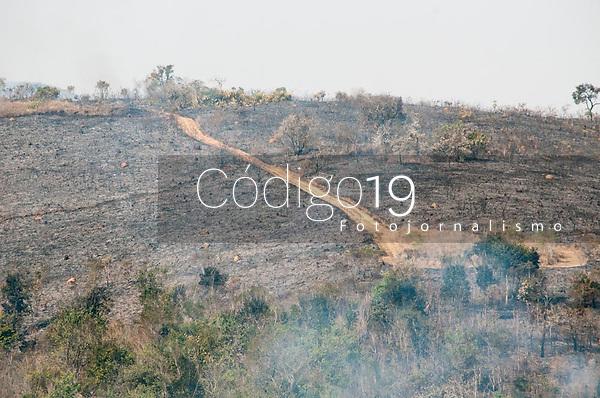 SÃO PAULO, SP, 23.08.2021: Incêndio Parque Estadual Juquery SP -Vista do Parque Estadual do Juquery na manhã desta segunda - feira (23). No destaque vegetação  queimada no Parque Estadual Juquery na cidade de Franco da Rocha SP.
