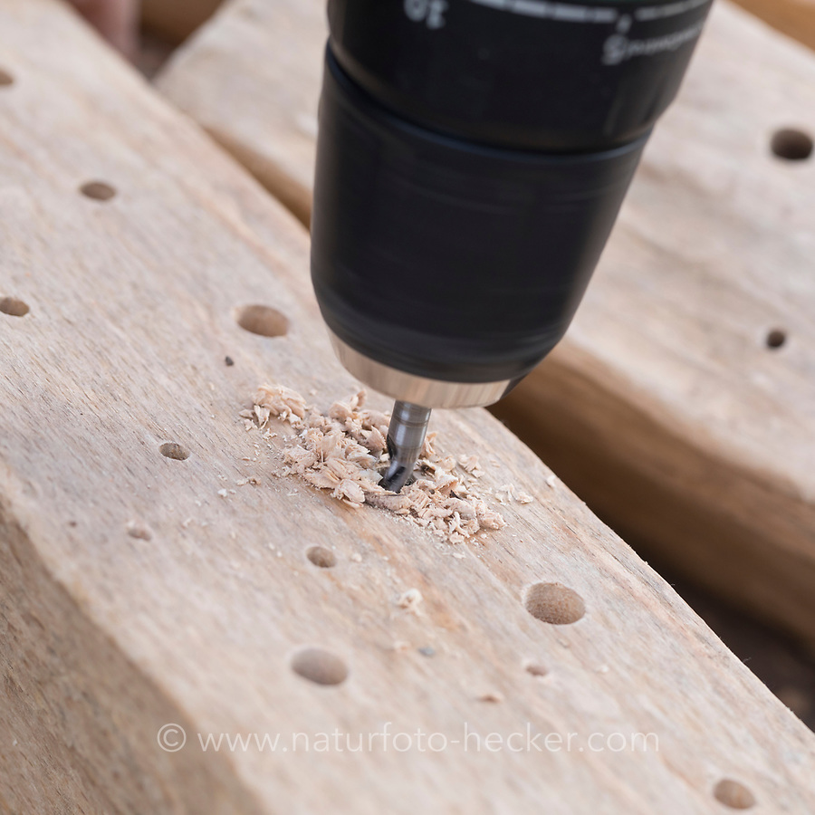 Mit scharfem Bohrer werden Löcher in Hartholz, Längsholz, Holz gebohrt. Schritt 1: Löcher, Loch bohren. Wildbienen-Nisthilfen, Wildbienen-Nisthilfe selbermachen, selber machen, Wildbienenhotel, Insektenhotel, Wildbienen-Hotel, Insekten-Hotel