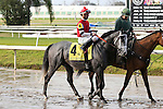 NEW ORLEANS, LA - JANUARY 21:<br /> One Mean Man #4 ridden by James Graham in the post parade before the Colonel E.R. Bradley Handicap at the Fairgrounds Race Course on January 21,2017  in New Orleans, Louisiana. (Photo by Steve Dalmado/Eclipse Sportswire/Getty Images)