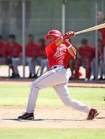 Anel De Los Santos / Los Angeles Angels 2008 Instructional League..Photo by:  Bill Mitchell/Four Seam Images