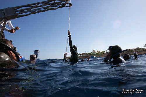 Dahab, known throughout the world as the mecca for freediving