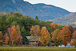 Fall foliage in Stowe, Oxford County, MEStowe, Oxford County, ME