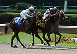 10 July 10: Awesome Feather (no. 4), ridden by Jeffrey Sanchez and trained by Stanley Gold, wins the J J'sdream Stakes for two year old fillies at Calder Race Course in Miami Gardens, Florida.
