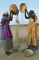 Mali. Province of Segou. Kondogola. Women at work in the fields after sunset. Sorghum winnowing. The sorghum is a tropical graminaceous. © 2003 Didier Ruef