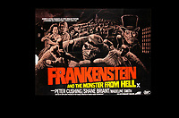 BNPS.co.uk (01202) 558833. <br /> Pic: SpecialAuctionServices/BNPS<br /> <br /> Frankenstein and the Monster from Hell starring Peter Cushing<br /> <br /> A collection of rare movie posters that have been sat gathering dust in a garage have sold at auction for £6,500.<br /> <br /> The 32 sheets date from the 1950s to the '70s and promote classic movies such as Frankenstein and Christopher Lee's Dracula.<br /> <br /> The vendor had owned the posters for several years after she had inherited them from a relative.