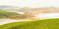 Hazy sunshine over Haldane Bay and farmland at Slope Point, Catlins, Southland, New Zealand, NZ