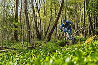 A mountain biker Jon Bokrantz rides a single track trail through the Änggårdsbergen Nature Reserve, Gothenburg, Sweden