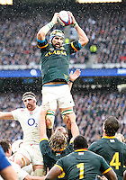 Photo: Richard Lane/Richard Lane Photography. England v South Africa. QBE Autumn International. 15/11/2014. South Africa's Victor Matfield wined a lineout.