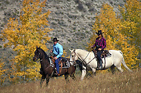 Woman, Couple, Man, Scenic, Sports, Lifestyle, Horseback Riding, Exercise, Fitness, Autumn, Aspen Leaves, Meadow, Cowgirl, Cowboy, Horses. Couple ( MR 515, 498). Backcountry Colorado United States Rocky Mountains.