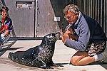 Working With Harbor Seal
