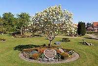 Friedhof in Rønne, Insel Bornholm, Dänemark, Europa<br /> Cemetery, Roenne, Isle of Bornholm, Denmark