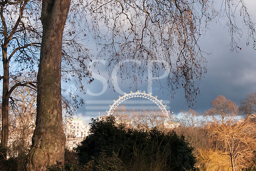 St. James's Park. View of the London Eye.