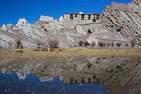 Shey Monastery Reflection outside Leh, Ladakh