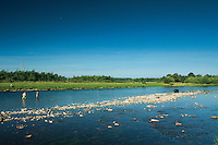 Anglers on the River Spey at Fochabers, Moray