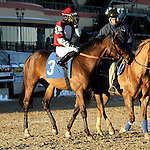 Lawmaker the 144th running of the Grade II Jerome Stakes for 3-year olds, going 1 mile 70 yards on the inner dirt, at Aqueduct Racetrack.