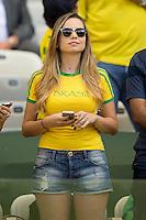 A pretty Brazil fan
